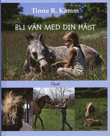bokomslag Bli vän med din häst
