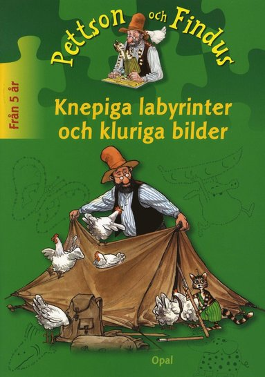 bokomslag Knepiga labyrinter och kluriga bilder