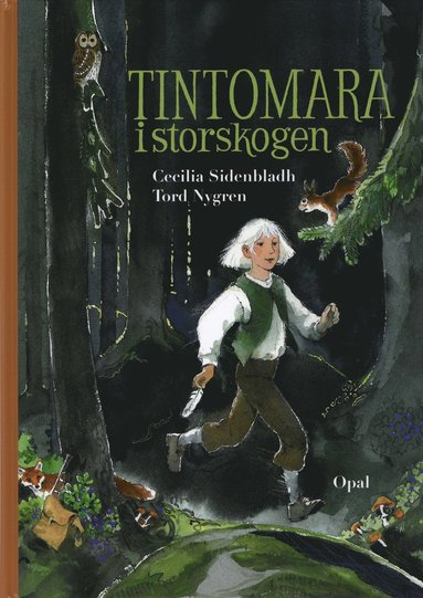 bokomslag Tintomara i storskogen