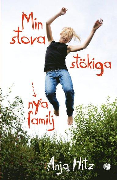 bokomslag Min stora stökiga nya familj