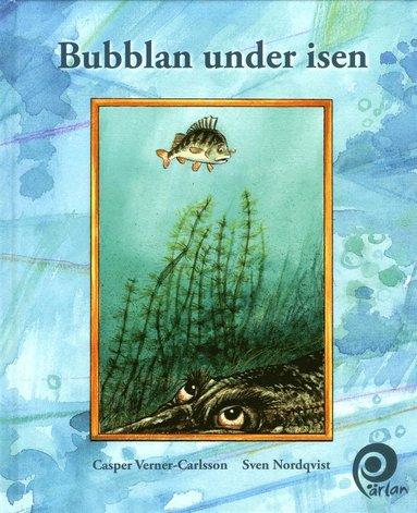 bokomslag Bubblan under isen