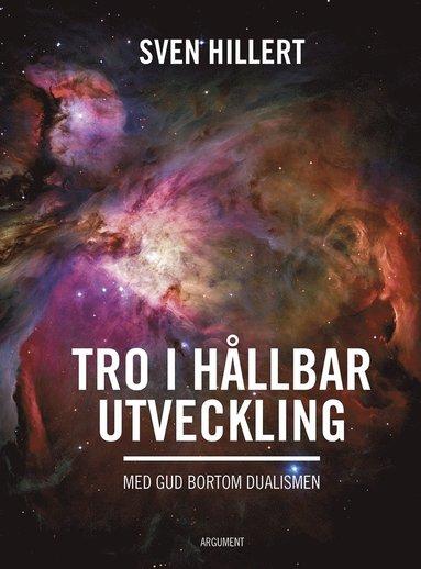 bokomslag Tro i hållbar utveckling : med gud bortom dualismen
