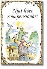 bokomslag Njut livet som pensionär!