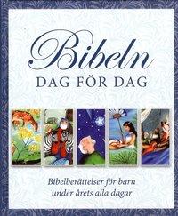 bokomslag Bibeln dag för dag