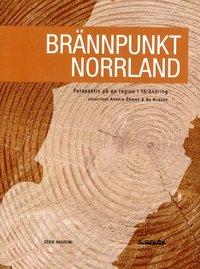 bokomslag Brännpunkt Norrland : perspektiv på en region i förändring