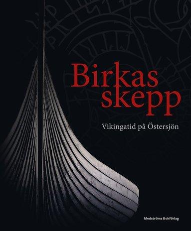 bokomslag Birkas skepp