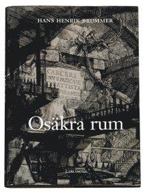 bokomslag Osäkra rum