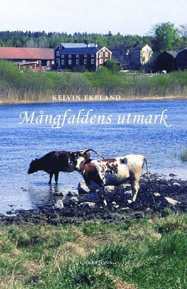 bokomslag Mångfaldens utmark
