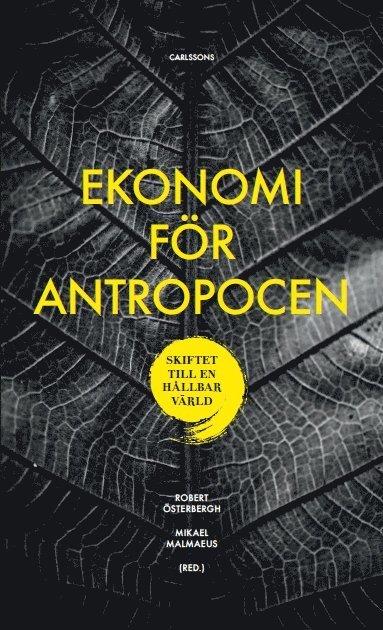 bokomslag Ekonomi för Antropocen : skiftet till en hållbar värld