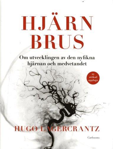 bokomslag Hjärnbrus : om utvecklingen av den nyfikna hjärnan och medvetandet