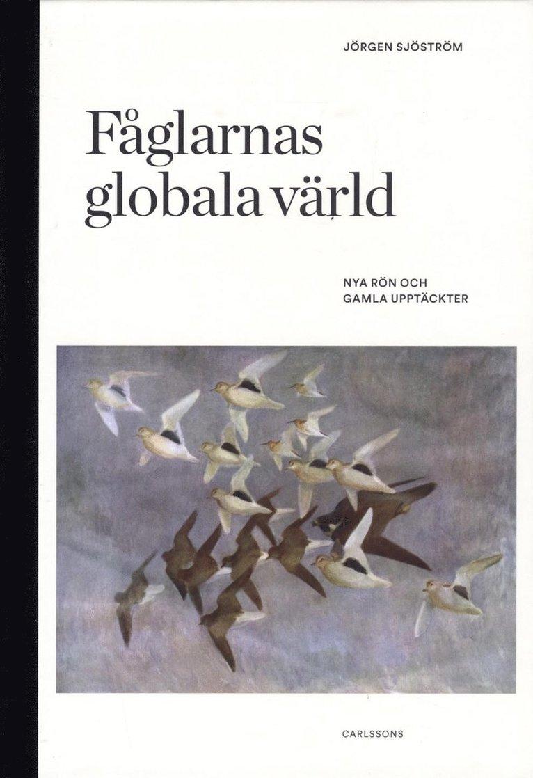 Fåglarnas globala värld : nya rön och gammal kunskap 1