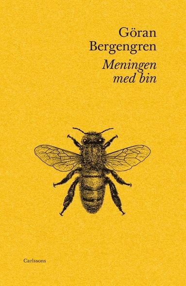 bokomslag Meningen med bin