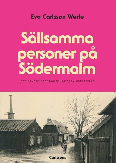 bokomslag Sällsamma personer på Södermalm : ett stycke Stockholmshistoria underifrån