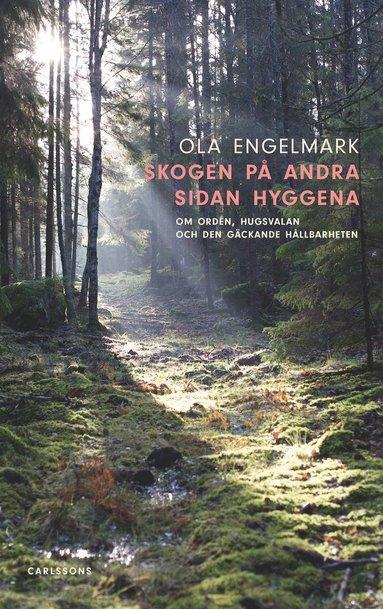 bokomslag Skogen på andra sidan hyggena : om orden, hugsvalan och den gäckande hållbarheten