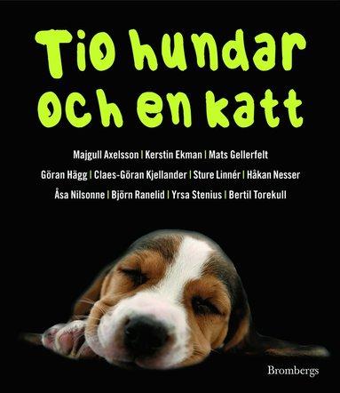 bokomslag Tio hundar och en katt