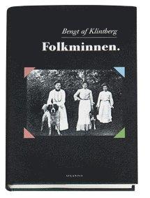 bokomslag Folkminnen