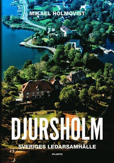 bokomslag Djursholm : Sveriges ledarsamhälle