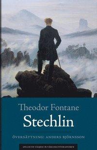 bokomslag Stechlin