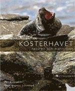 bokomslag Kosterhavet : naturen och människan