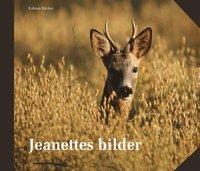 bokomslag Jeanettes bilder : vår, sommar, höst och vinter