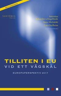 bokomslag Tilliten i EU vid ett vägskäl