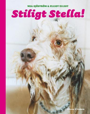 bokomslag Stiligt Stella!