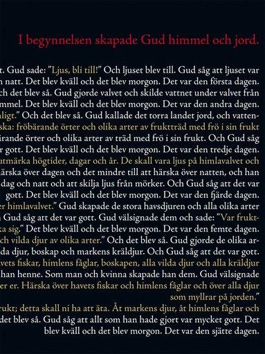 bokomslag Bibeln