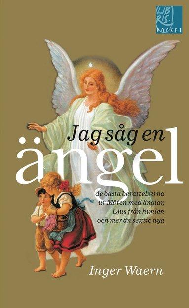 bokomslag Jag såg en ängel : de bästa berättelserna ur Möten med änglar, Ljus från himlen, och mer än sextio nya