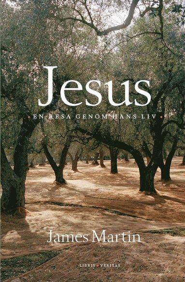 bokomslag Jesus : en resa genom hans liv