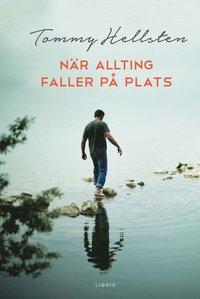 bokomslag När allting faller på plats : en bok om att finna mening