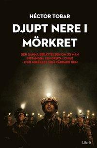 bokomslag Djupt nere i mörkret : den sanna berättelsen om 33 män instängda i en gruva i Chile - och miraklet som räddade dem