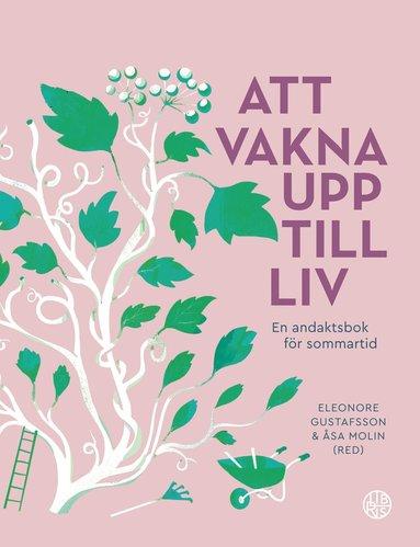 bokomslag Att vakna upp till liv : En andaktsbok för sommartid