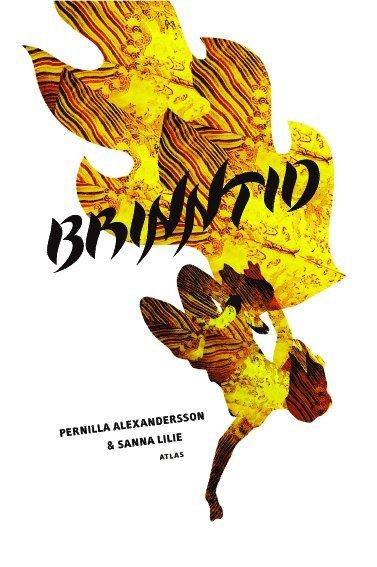 bokomslag Brinntid