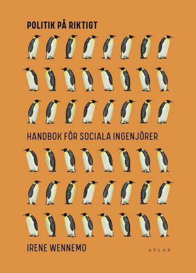 bokomslag Politik på riktigt : handbok för sociala ingenjörer