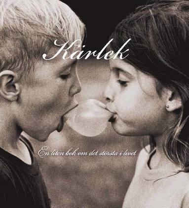 bokomslag Kärlek : en liten bok om det största i livet