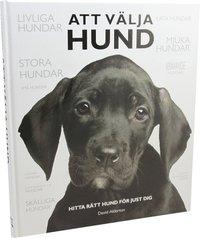 bokomslag Att välja hund : hitta rätt hund för just dig