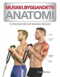 bokomslag Muskelbyggandets anatomi : 70 övningar som ger maximalt resultat