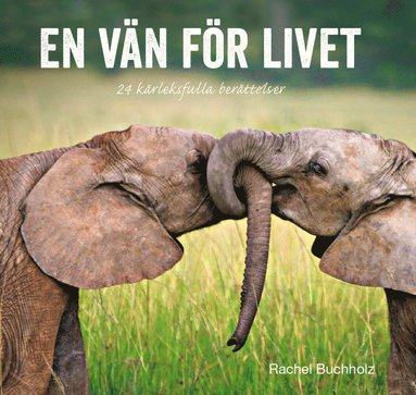 bokomslag En vän för livet : kärleksfulla berättelser och citat