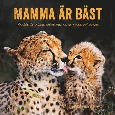 bokomslag Mamma är bäst : berättelser och citat om sann moderskärlek