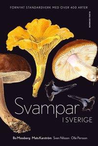 bokomslag Svampar i Sverige