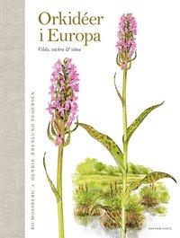 bokomslag Orkidéer i Europa : vilda, vackra & väna