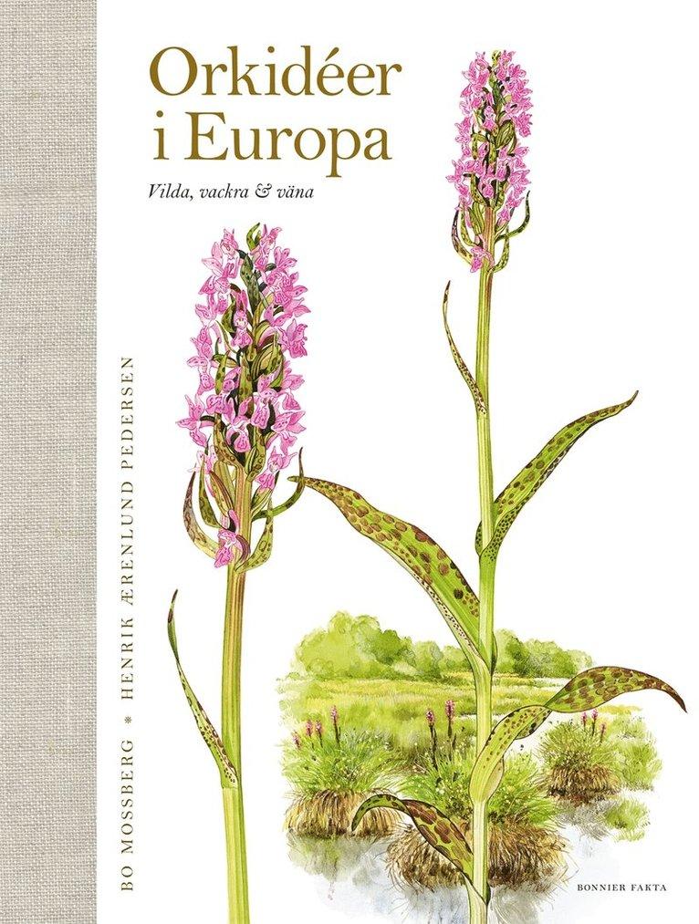 Orkidéer i Europa : vilda, vackra & väna 1