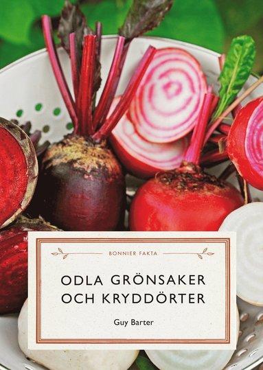 bokomslag Odla grönsaker och kryddörter