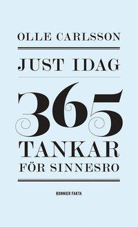 bokomslag Just idag : 365 tankar för sinnesro
