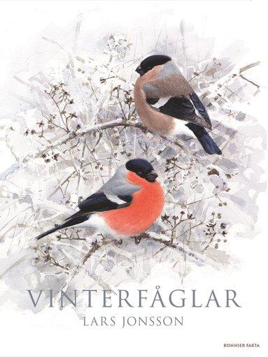 bokomslag Vinterfåglar