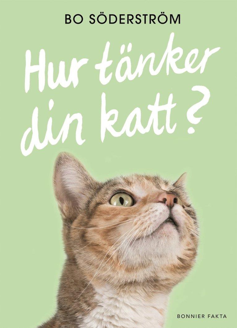 Hur tänker din katt? 1