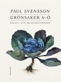 bokomslag Grönsaker A-Ö : recept och bruksanvisning