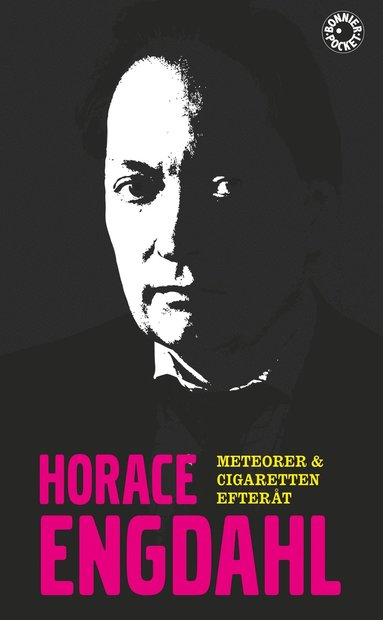 bokomslag Meteorer & Cigaretten efteråt
