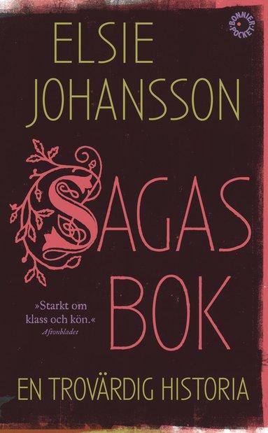 bokomslag Sagas bok : en trovärdig historia