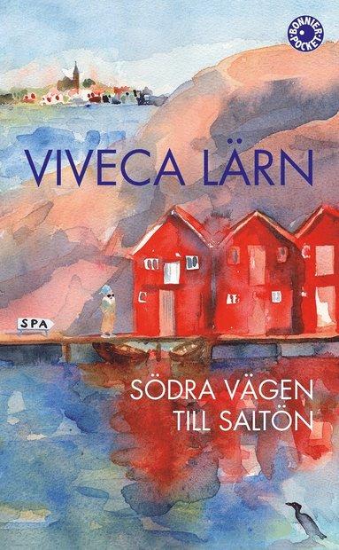 bokomslag Södra vägen till Saltön